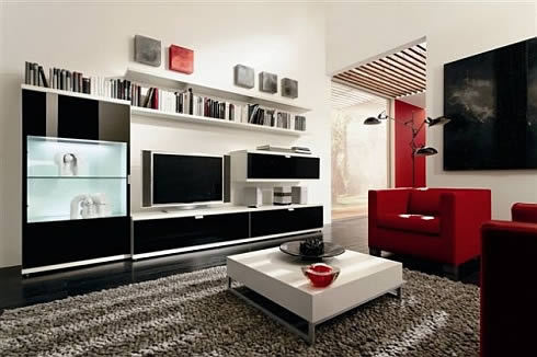 Exquisite Modern Living Room Furniture